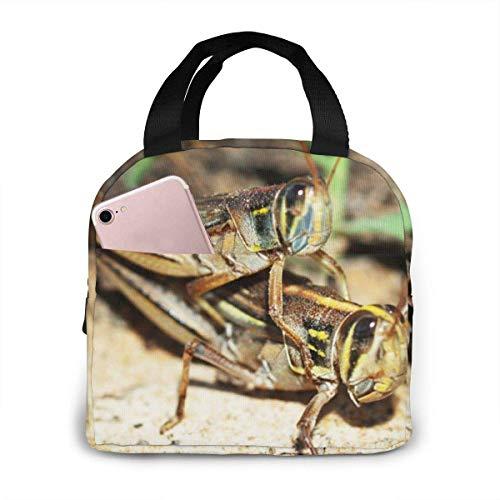 N\A Grasshopper Art Printed Isolierte Lunch-Tasche für Frauen Kapazität, Wiederverwendbare wasserdichte Kühltasche Lunch-Box für Teenager Mädchen Schulreise Picknick