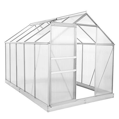Zelsius Aluminium Gewächshaus für den Garten | inklusive Fundament | 310 x 190 cm | 6 mm Platten | Vielseitig nutzbar als Treibhaus, Tomatenhaus, Frühbeet und Pflanzenhaus