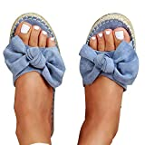 KingbeefLIU Zapatillas Mujer Color Sólido Estampado De Leopardo Bowknot Antideslizante Zapatillas De Punta Abierta Sandalias Planas Azul 42