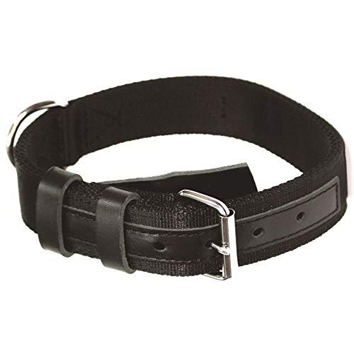 Dingo Gear Zivilist Halsband aus Band Schwarz Große 40-48 cm S04043
