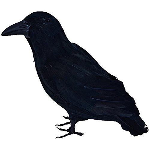 Unbekannt Schwarzer Rabe 30 cm mit echten Federn Tier Vogel Kostümzubehör Hexe