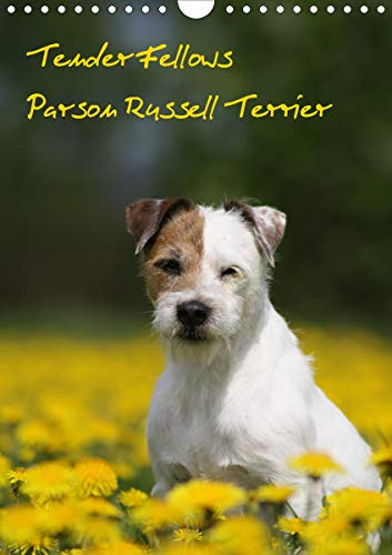 Tender Fellows - Parson Russell Terrier (Wandkalender 2021 DIN A4 hoch)