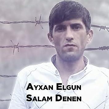 Salam Denen