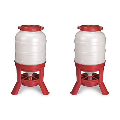 Little Giant Plastic Dome Feeder (60 Lb) Heavy Duty Plastic Gravity Fed Poultry Feed Container Tank (Red) (Item No. DOMEFDR60) (2 Pack)
