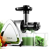 Low Speed Masticating Juicer Extractor, BPA Free Cold Press Juicer, Quite Motor,