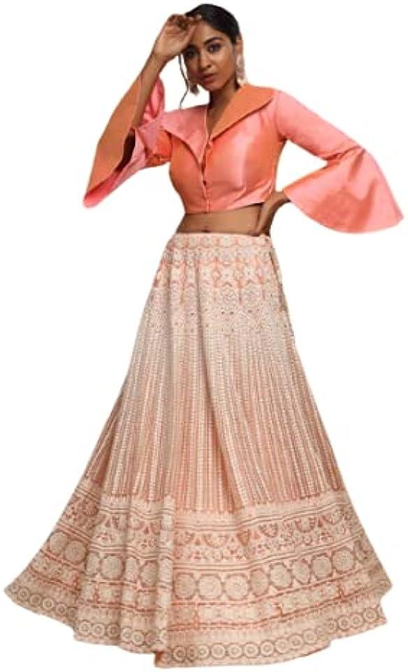 Net Lucknowi Embroidered Crop top and Skirt Bollywood lahanga choli Indian Lehenga Choli Designer Lehenga Choli
