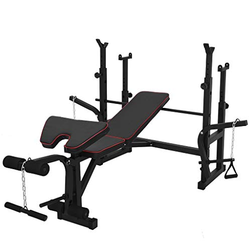 Tengma Adjustable Weightlifting Bench, Barbell Bench, Olympic Workout Bench with Squat Rack, Leg Extension, Preacher Curl, Weight Storage, Strength Training Fitness Equipment for Full-Body Workout