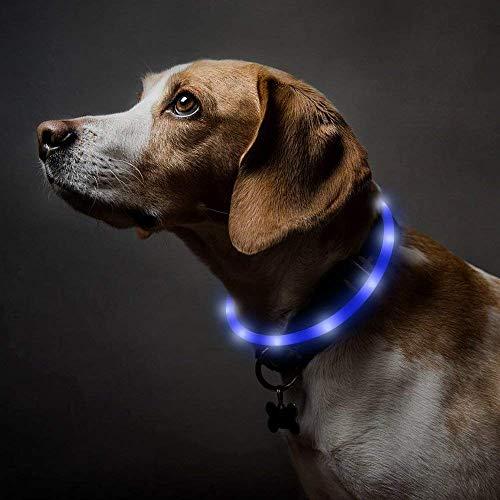 HomeChi LED Collar para Perro, Adjustable Collar Recargable USB Collar, Seguridad, Visible de Noche, 3 Modos de Destello, Calming and...