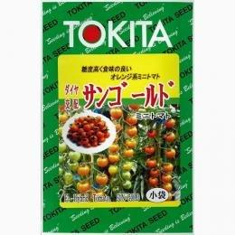 ミニトマト 種 【 サンゴールド 】 種子 小袋