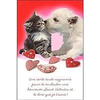 グリーティングカード バレンタイン「仲良しな猫と犬」 ハート メッセージカード 手紙 おしゃれ 贈り物 ギフト 封筒付き
