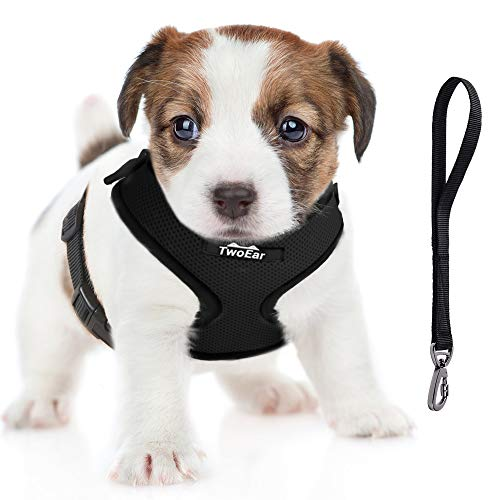 TwoEar Dog Harness |Car Harness for Dog |Adjustable Pet Harness |Breathable Pet Harness with Car Vehicle Safety Seat Belt. Outdoor Walking, for X-Small/Small/Medium/Large Dogs Cat Puppy(XS,Black)