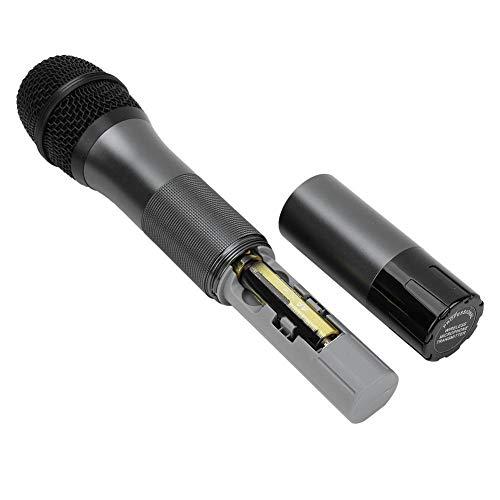 lahomie Set draadloze microfoon professionele UHF-systeem microfoon ontvanger voor bruiloft outdoor conferenties, karaoke, feesten en avondevenementen