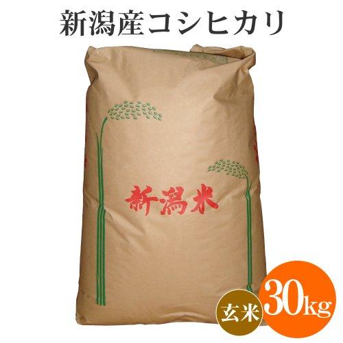 新潟県産 玄米 コシヒカリ 30kg/お米 新潟 こしひかり
