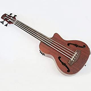 Best ns nxt electric upright bass Reviews