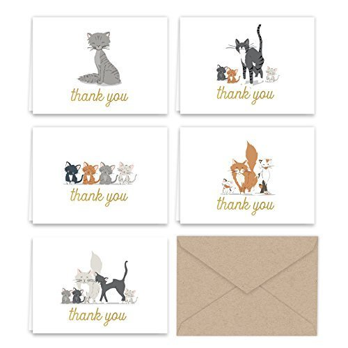 Paper Frenzy Kittens and Kitty Cats Thank You Note Card Collection 25 pack with Kraft Envelopes