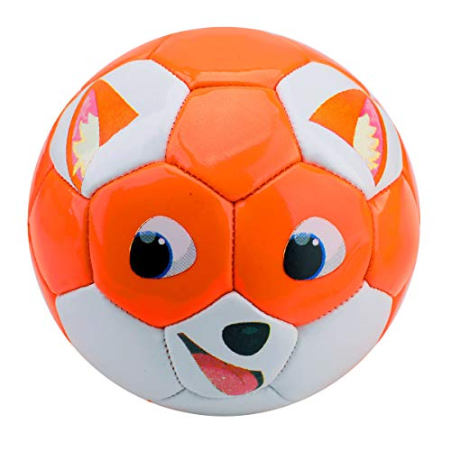 Soccer Ball-EVERICH TOY Size 2 Soccer Balls for Kids-Sport Ball for Toddlers-Backyard Lawn Sand Outdoor Toys for Boys and Girls,Including Pump