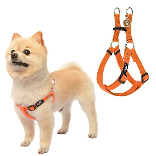 Step in Dog Harness Facts