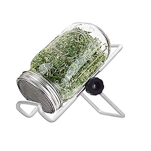 DierCosy Tools Mason Jars Sprout Kit Germinación Art Germinación con soporte de cubierta para cultivar brotes de brócoli, alfalfa (1000 ml)