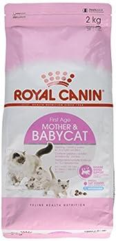 Royal Canin/Babycat sac de 2 kg croquettes pour chaton de 1 à 4 mois