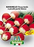 Sementi orticole di qualità l'ortolano in busta termosaldata (160 varietà) (RAVANELLO ROSSO TONDO A PICCOLA PUNTA BIANCA)