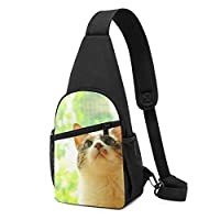 かわいい猫 緑の背景 ボディバッグ ショルダーバッグ 斜めがけバッグ ワンショルダーバッグ ボディーバッグ メンズ メンズ
