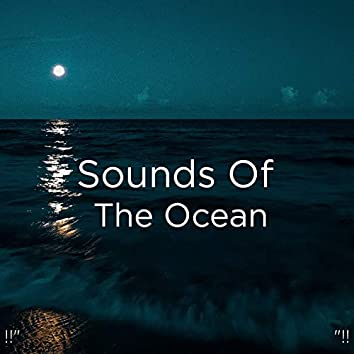 """!!"""" Sounds Of The Ocean """"!!"""