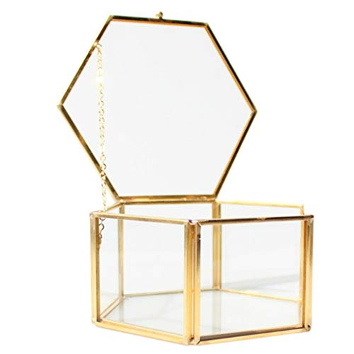 Hexágono Latón Cristal Geométrico Terrario Suculenta