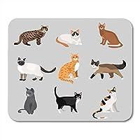 マウスパッドラバーミニ長方形かわいい漫画キティ猫異なる色の毛皮とマーキングスタンディングゲームノートブックコンピューターアクセサリーバッキング