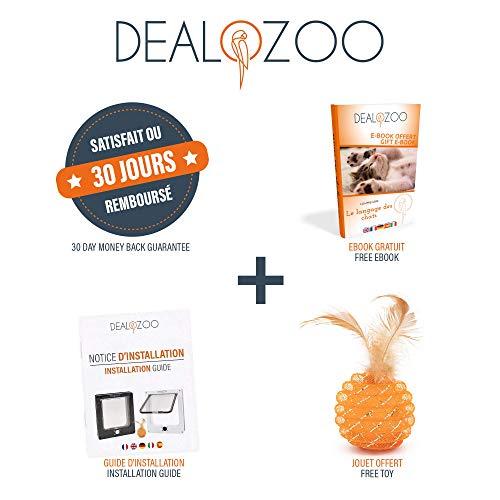 Dealozoo Deal-01a