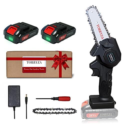 TORRYZA Mini Chainsaw 4-Inch Cordless Power Chain Saws, Portable 26V...