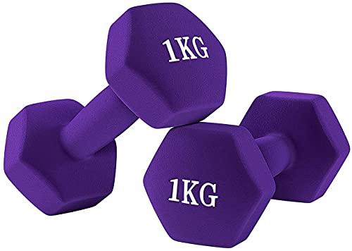 ダンベル【2個セット1kg 2kg 3kg 4kg 5kg 6kg 8kg10kg】【 選べる4色】カラーダンベル 握りやすい 無臭素材 軽量 筋トレ ダイエット 鉄アレイ ソフトコーティング 001 (1kg×2-パープル)
