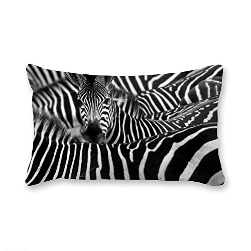 VinMea Decorative Lumbar Pillow Covers A Zebra Surrounded with Black And White Stripes Throw Pillow Covers 20x26 Inch for Sofa Couch Chair Seat Decoration