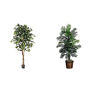 """Silk Flower Arrangements Nearly Natural 6ft. Ficus Artificial Trees, 72in, Green & 5263-0308 56in. Areca Palm Silk Tree with Basket,Green,10"""" x 10"""" x 48"""""""