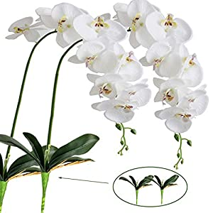 FagusHome Flores de Phalaenopsis de Seda Artificial de 41″2 Piezas con 2 Paquetes de Hojas Flores de orquídeas Artificiales Tallo Plantas en Flores Blancas Falsas para decoración (2)