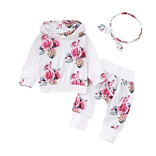 幼儿女婴衣服新生儿长袖碎花衫外套+裤子Halen的头带+白