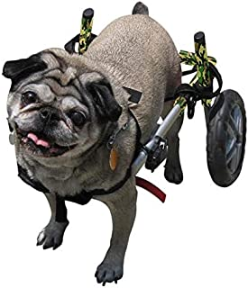 wheels for dogs with no back legs