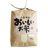 ミルキークイーン 令和元年産 三重県産 5kg (白米)