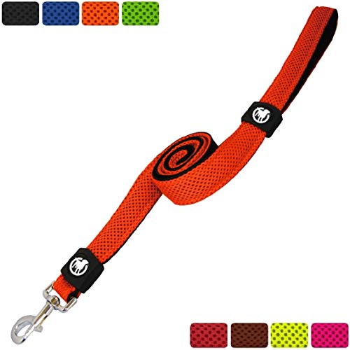 DDOXX Hundeleine Air Mesh, Hand-Schlaufe, 120 cm | viele Farben & Größen | für kleine & große Hunde | Leine Hund Katze Welpe | Schlepp-Leine groß | Führ-Leine klein | Lauf-Leine | Orange, XS