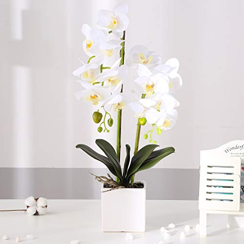 KINBEDY Artificial Bonsai Silk Orchids Phalaenopsis with Vase Home Office Decoration Party Wedding Decor, White-Square Ceramics Vase.