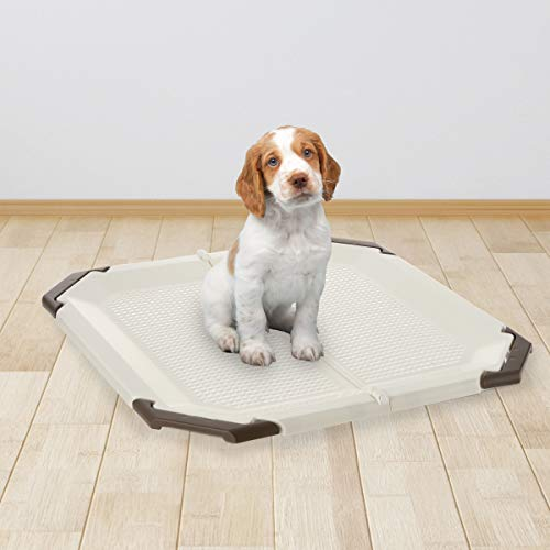 PAW TRAX Potty Pad Holder, Puppy Training Pad Tray, for a pad 21 x 21 inches