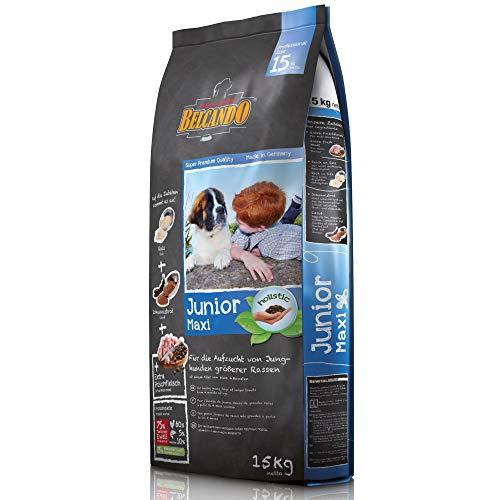 Belcando Junior Maxi [15 kg] Hundefutter | Trockenfutter für Junghunde großer Rassen | Alleinfuttermittel für Junghunde ab 4 Monaten