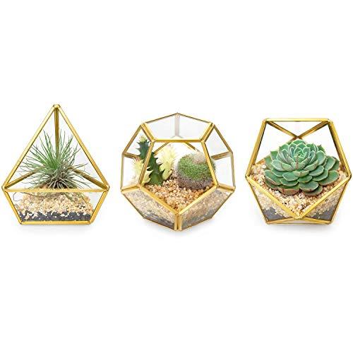Mkouo 3 Packs Mini Geometrisches Terrarium aus Glas Container Modern Tisch Pflanzer Windowsill Decor DIY Display Box Centerpiece for Sukkulente Luftanlage Miniature Fairy Garden, Gold