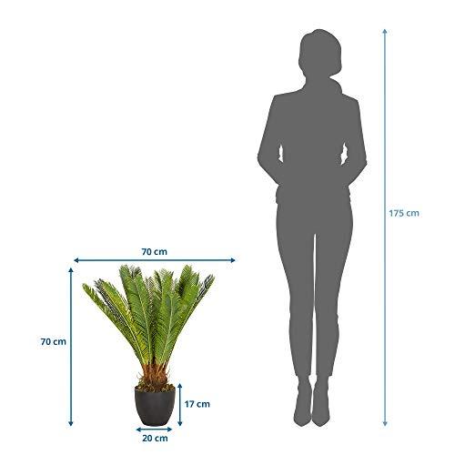 hjh OFFICE Kunstpflanze Cycas Palme Höhe 70 cm Grün 24 Palmwedel Kunstpalme klein Cycaspalme Palmfarn künstlich, 871004 - 5