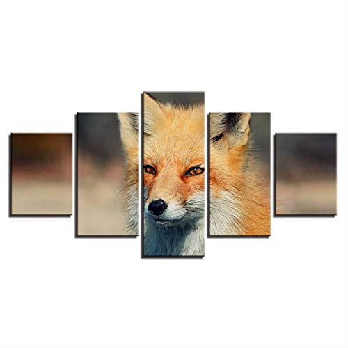 DGGDVP Modern Canvas HD Impreso Pinturas Modular Wall Art Posters Decoracion para el hogar 5 Piezas Animales Fox Imagenes para Sala Tamano 2 Sin Marco