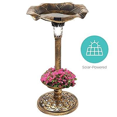 Best Choice Products Outdoor Solar Lighted Pedestal Bird Bath