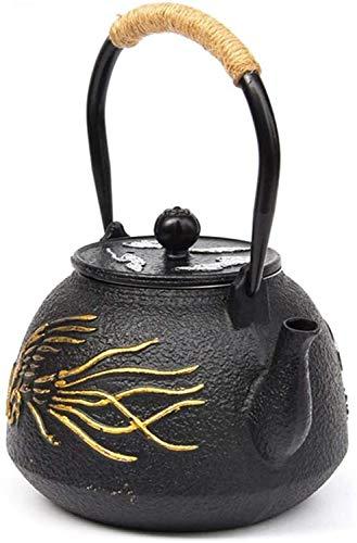 FJH Tetera de Hierro Fundido 1.2L, Hecha a Mano de Alta Capacidad Japonesa sin revestir sin revestir la Caldera de té de la Vendimia Tetera de Hierro 42 oz