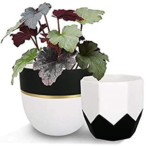 Ceramic Plant Flower Pots Indoor – 6.3 + 5 Inch Modern White Geometric Octagon & Round Orchid Cactus Herb Planter Pots for Home Decor, Matte Finish