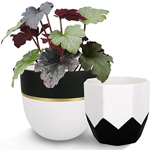 Ceramic Plant Flower Pots Indoor - 6.3 + 5 Inch Modern White Geometric Octagon & Round Orchid Cactus Herb Planter Pots for Home Decor, Matte Finish