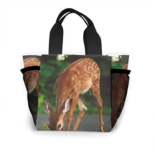 Tote Lunch Bag, Süße Sikahirsch Print Große Kühltasche Container Thermo-Kühler Pack Picknicktasche für Frauen & Männer Reisebüro Bea