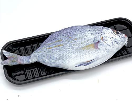ロジック 魚 ペンケース [おしゃれ文房具/筆箱/ポーチ] リアルテイスト 薄い 大きめ (シルバー) 本物そっくり 学校 習い事 面白い アイテム かわいい ポーチ 筆箱 小物入れ プレゼント ギフト 景品